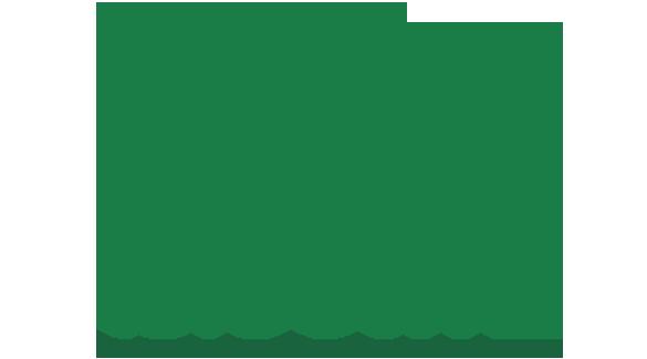 Mir Telecom Ltd.